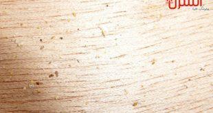 التخلص من سوس الخشب