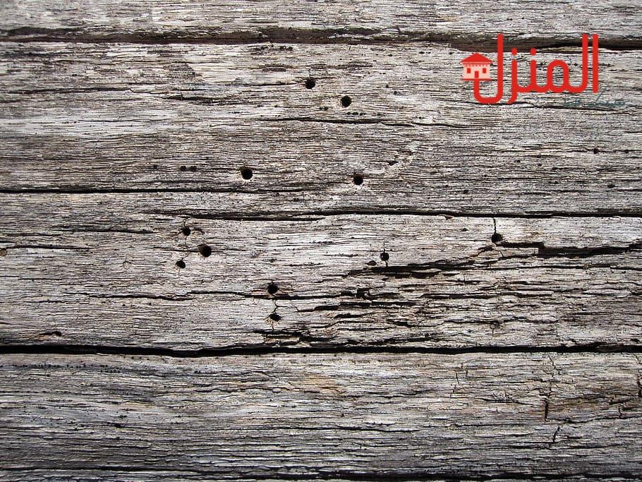 علاج السوس فى الخشب